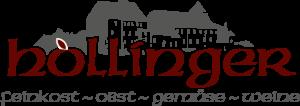 kronbichler-werbung-design-logo-hollinger